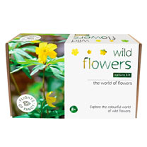 About Wild Flowers Kit