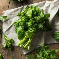 Broccoli Raab Seeds - Quarantina