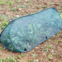 Pop-up Triangle Cloche - Large Net