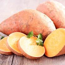 Sweet Potato Plants - Beauregard