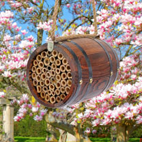 Bee-r Barrel
