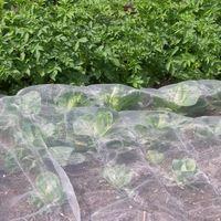 Veggiemesh Insect Netting for Vegetables