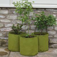 Vigoroot Pots 10L (3 Pack)