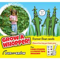 Bean (Runner) Seeds - Grow A Whopper! (Scarlet Emperor)