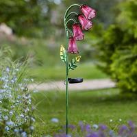 Solar Flowers - Foxglove (2 Pack)