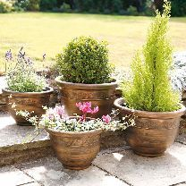 Antique Bronze Planters