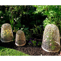 Bamboo Bell Cloches - Large