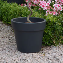 Dark Grey Planters - 30cm Top Planter