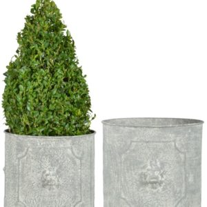 Fallen Fruits Round Lion Head Planters (Set of 2)