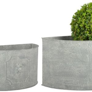 Fallen Fruits Semicircle Lion Head Planters (Set of 2)