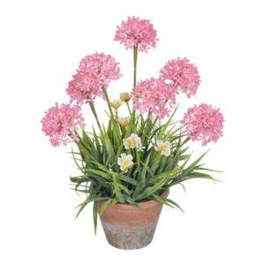 Allium Foliage Pot Pink 42cm