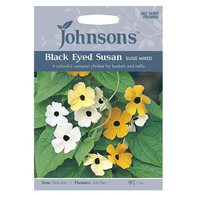 Johnsons Black Eyed Susan Susie M Seeds