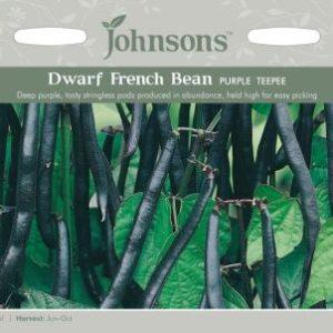 Johnsons Dwarf French Bean Purple Teepee Seeds