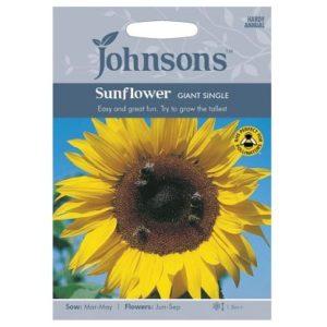 Johnsons Sunflower Giant Single Seeds