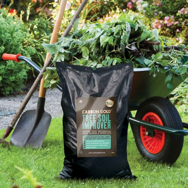 Carbon Gold Biochar Tree Soil Improver 12kg