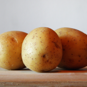 Casablanca Seed Potatoes 1kg