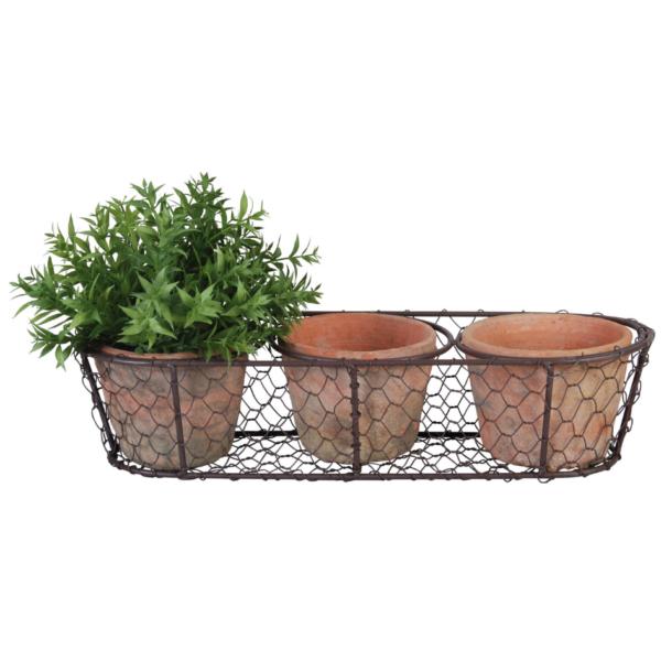 3 Aged Terracotta Pots in Wire Basket