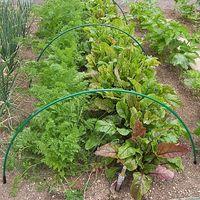 Flexible Green Garden Hoops for Creating Cloches