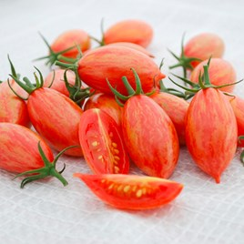 Tomato Artisan Seeds - Pink Tiger