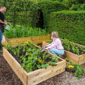 Allotment Wooden Raised Beds