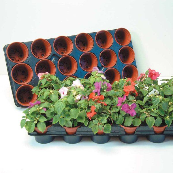'Grow On' Pots and Trays (Medium)