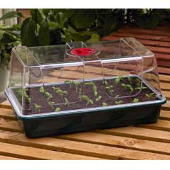 Garland High Dome Large Propagator with Holes